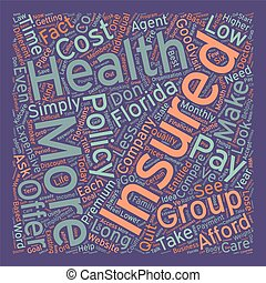 How To Compare Low Cost Health Insurance In Florida text background wordcloud concept