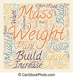 How To Gain Weight And Increase Muscle Mass text background wordcloud concept