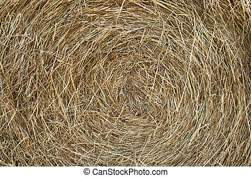 Hay background - Closeup of a bail of hay. Background.