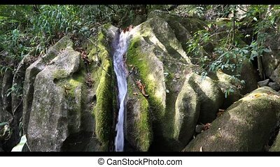 Small waterfall in Masoala national park, Madagascar - Small...