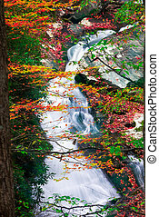 Fall Colors on Tremont Road - Cascading creek in the Great...