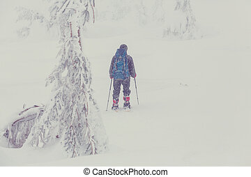 Hiker in the winter mountains