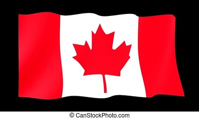 Canadian flag. Waving