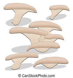 Abstract vector illustration of logo for mushroom