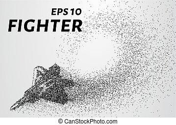 Fighter of the particles. The silhouette of the fighter is...