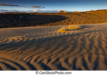 Sand dune with blowing sand at sunset near Nixon, Nevada