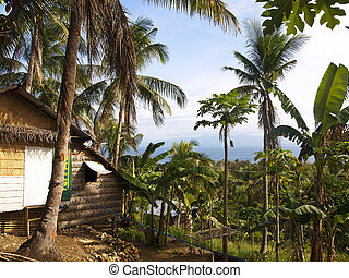 hut with a sea view - traditional filipino hut on Carabao...