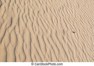 Sand Texture in morning at koh lanta ,Thailand