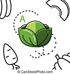 Healty food background representing. vitamin A cabbage icon