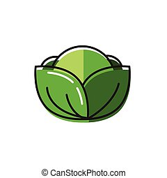 Healty food background representing. cabbage icon