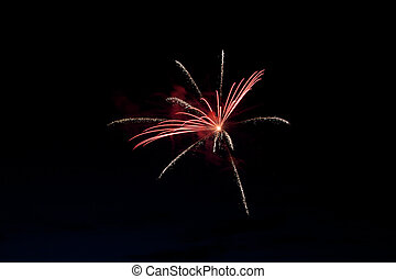 Fireworks at Pitt Meadows day