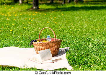 picnic basket with fruit on a plaid in the summer park