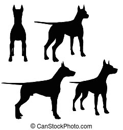 dog on white background - EPS 10 vector illustration of dog...