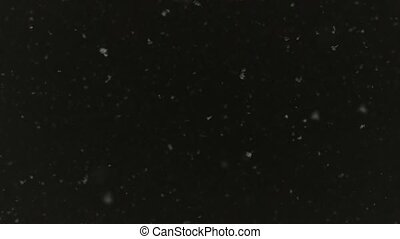 Snowflakes are dancing against black night sky background....