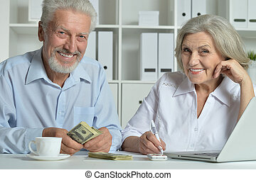 mature couple using laptop, posing and smiling