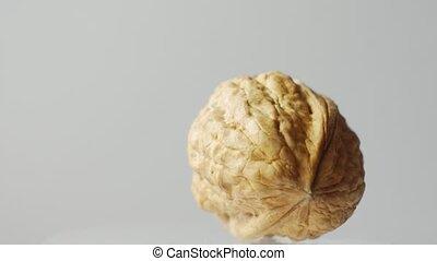Macro one walnut isolated on white background, rotates...