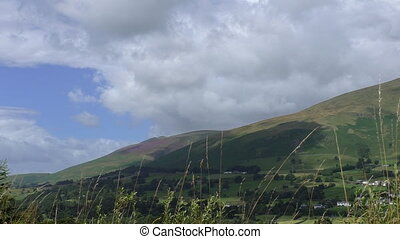 Lake District landscape - Grass swaying in foreground of...