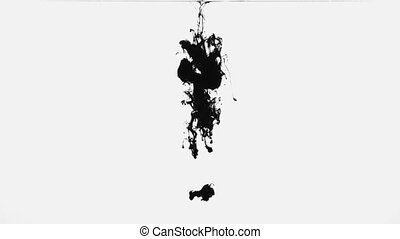 Black paint drops in the water - Black paint on the white...