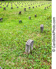 Many tombstones