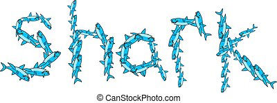 Shark Title - Blue graphic illustration of the word SHARK...