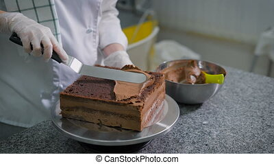 The woman at a leisure in kitchen cooks chocolate cake. The...
