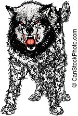 Angry Wolf - Vector Illustration of a very angry ferocious...