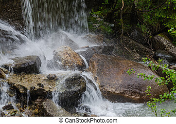 rocks in wild brook in the mountains