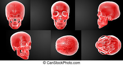 3D rendering red skull on black background