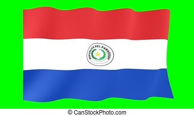 Flag of Paraguay. Waving flag computer animatie.