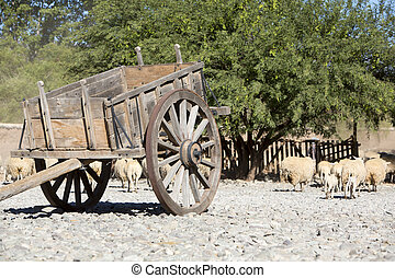 Old vintage horse carriage with goats, agriculture in...