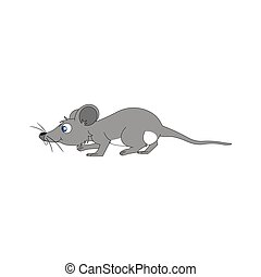 smal mouse with grey color
