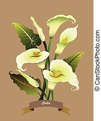 Calla flowers bouquet