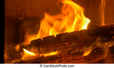 Burning Wood Fire in Stove