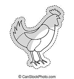 chicken meat butchery icon vector illustration design