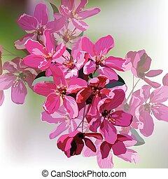Spring Summer Pink flowers - Vector Spring Summer Pink...