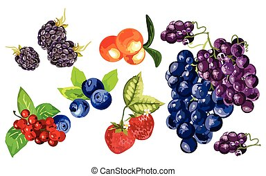 Blackberry, blueberry, cranberry, strawberry and grapes fruit