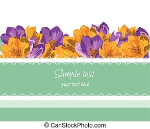 Greeting Card with Spring Summer colorful Flowers