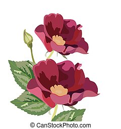 Anemone flowers isolated on white. Vector Red flower spring...