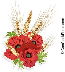 Poppy flowers and ear of wheat
