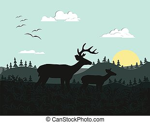 Two deer silhouette. Wild Nature background on sunrise