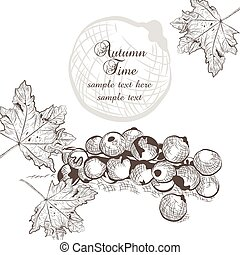 Autumn background with fruits and leaves. Vector fall season...