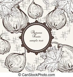 Autumn quince fruits background. Vector Old engraved...