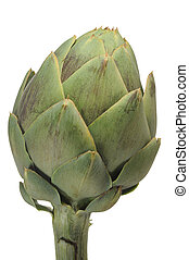 Artichoke - Close-up image of an artichoke with white...