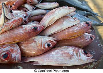 Fresh fishes at the fish market on the beach - Close up of...