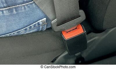 coche, asiento, seguridad, cinturón