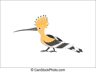 Hoopoe vector illustration - Hoopoe isolated on white...