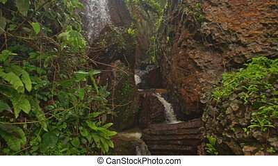 Backside Man Goes Down Path to Waterfall in Park Tropics -...