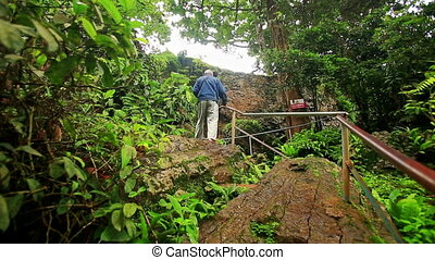 Backside Man Climbs Stone Steps to Waterfall in Tropical...