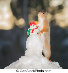 snowmans friends - red squirrel standing with a snowman