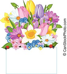 Colorful Fresh Spring Flowers - Colorful fresh spring...